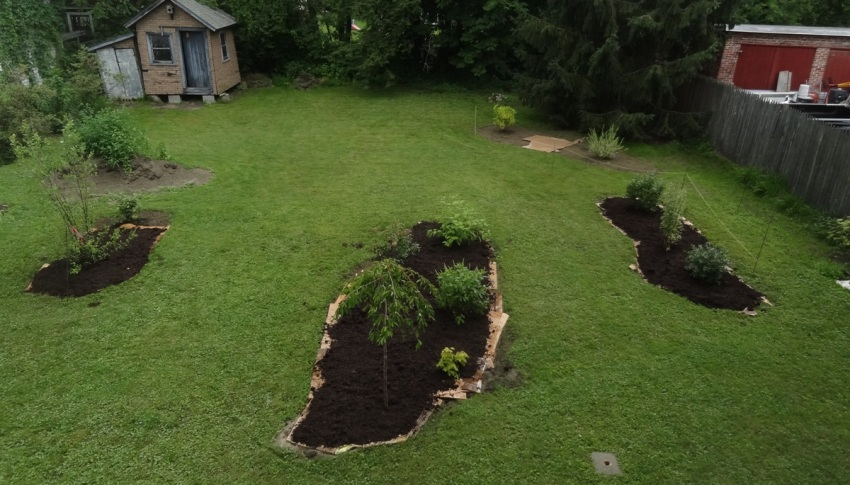 First garden plantings in July 2015