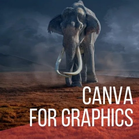 Canva for social graphics