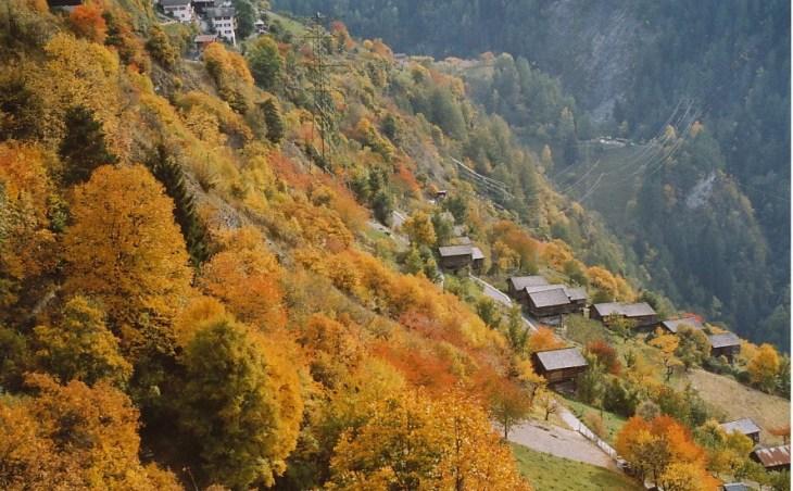 Arrivée en 2002 à Isérables - Valais.
