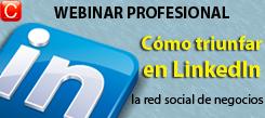 webinar profesional LinkedIn, como triunfar en la red de negocios redes sociales community internet social media