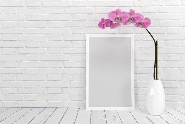 decorando espaço externo 1