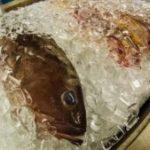 El dueño de un restaurante notó que un pez seguía vivo y lo salvó, liberándolo en el océano
