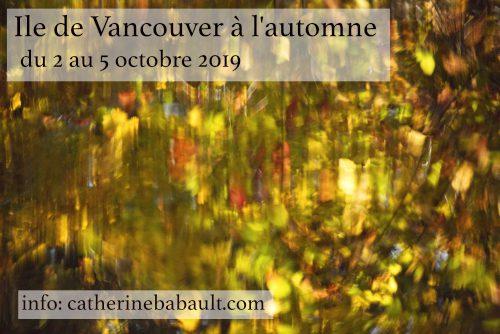 Atelier de photo de nature sur le terrain - Vallée de Comox