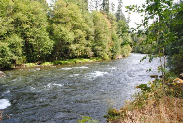 Compact Camping McKenzie River View