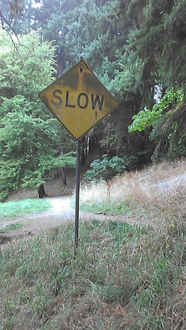 slow sign 01