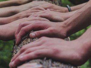Hands on Log