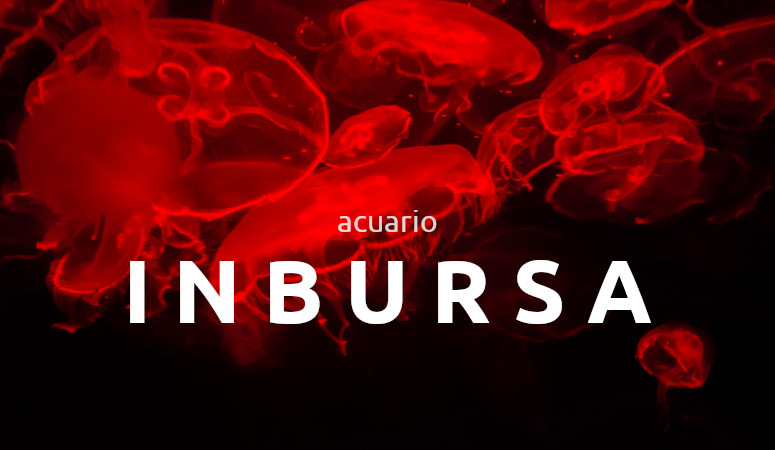 Acuario Inbursa, Ciudad de México.