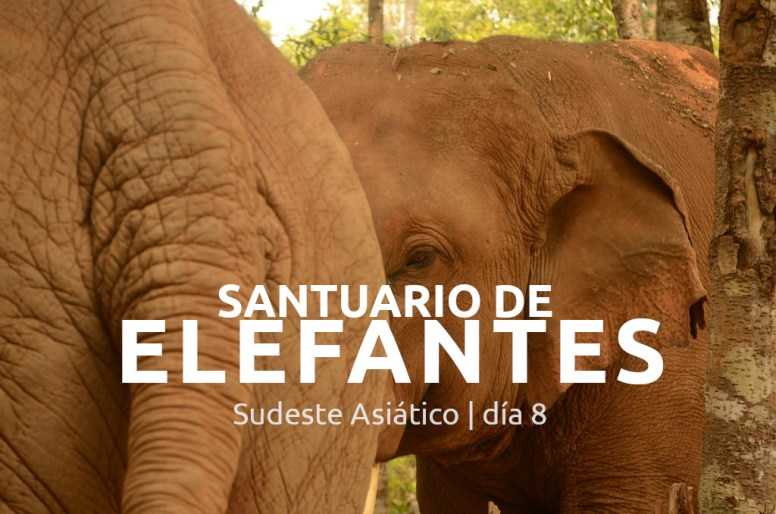 Sudeste Asiático, día 8: Santuario de Elefantes.