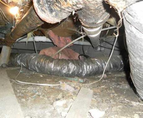 Everyone Hates Their Crawlspace, but You Don't Have to!
