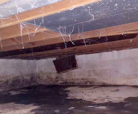 Keeping Your Crawl Space Clean This Spring