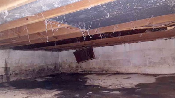 clean your crawl space