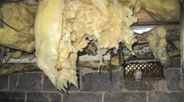 avoid a damp crawl space