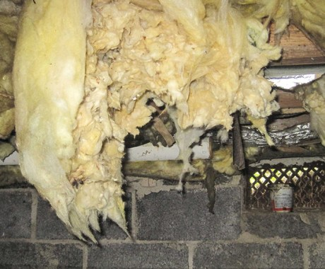Why Venting Your Crawl Space is a Terrible Idea