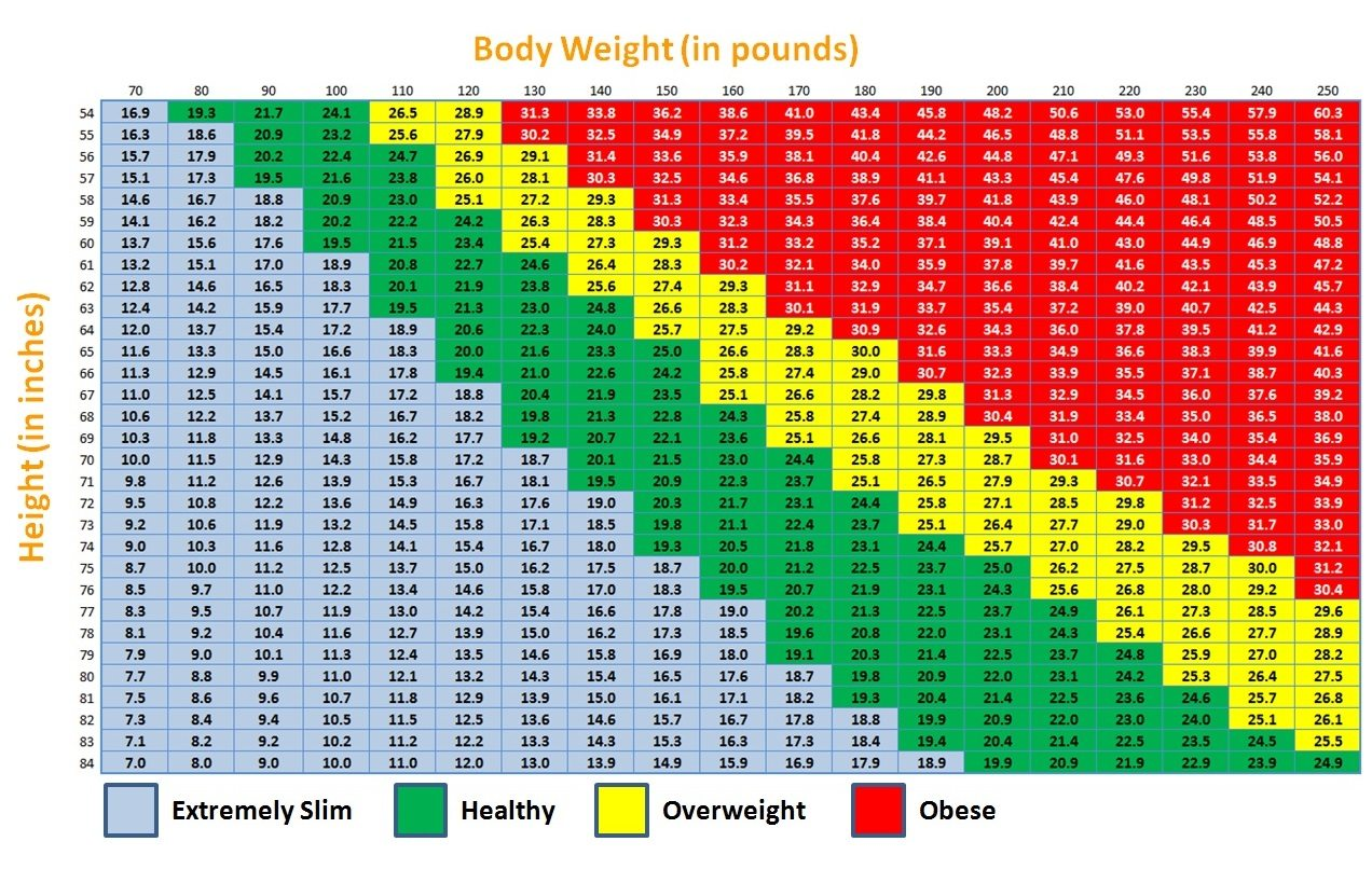 Bmi Is It Something To Worry About