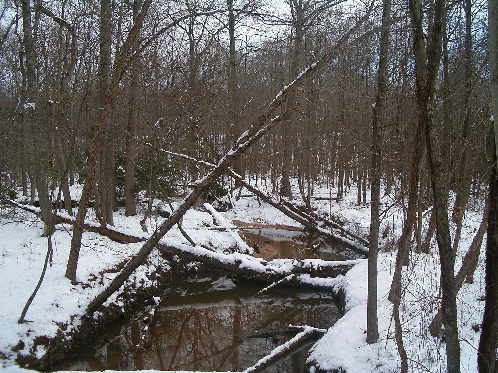 Still_Creek
