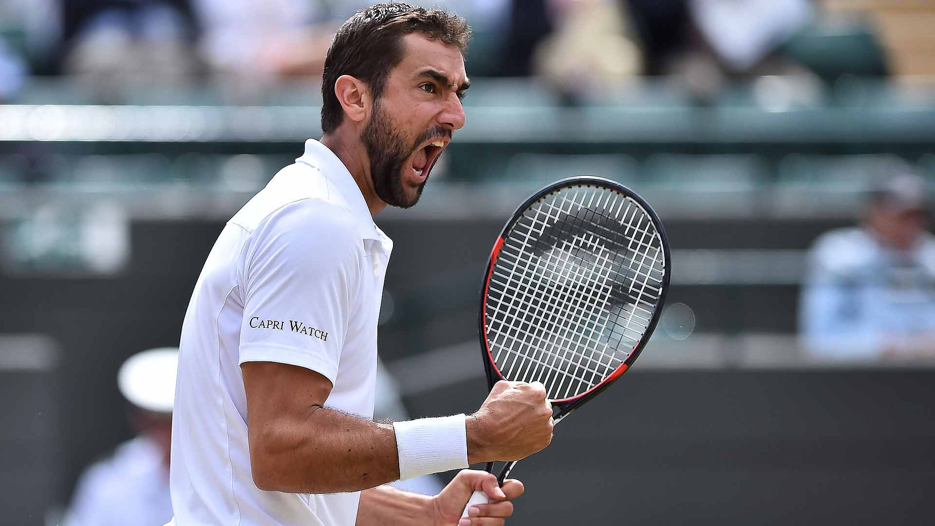 Cilic focused On ATP Finals Spot