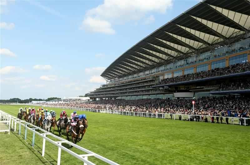 Watson Eyes Ascot Repeat For Soldier's Call