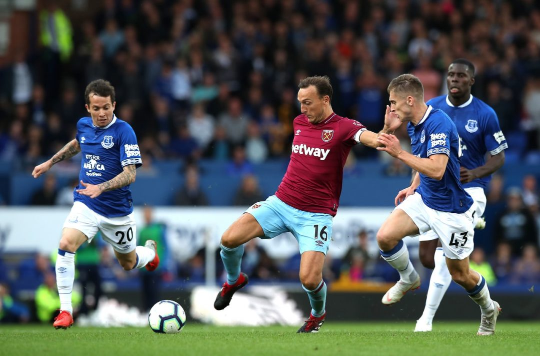 Noble Sets Sights On Foxes