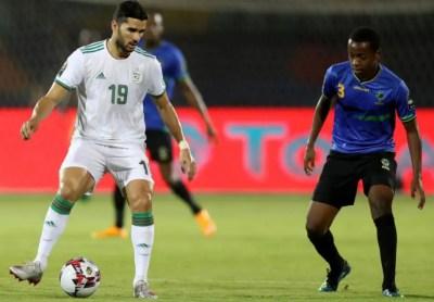 mehdi-abeid-desert-foxes-algeria-super-eagles-afcon-2019-africa-cup-of-nations-egypt-2019-bafana-bafana