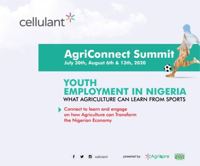 agriculture-is-the-now-but-it-must-learn-vital-lessons-sports-sector-gain-encourage-youth-participation-patronage