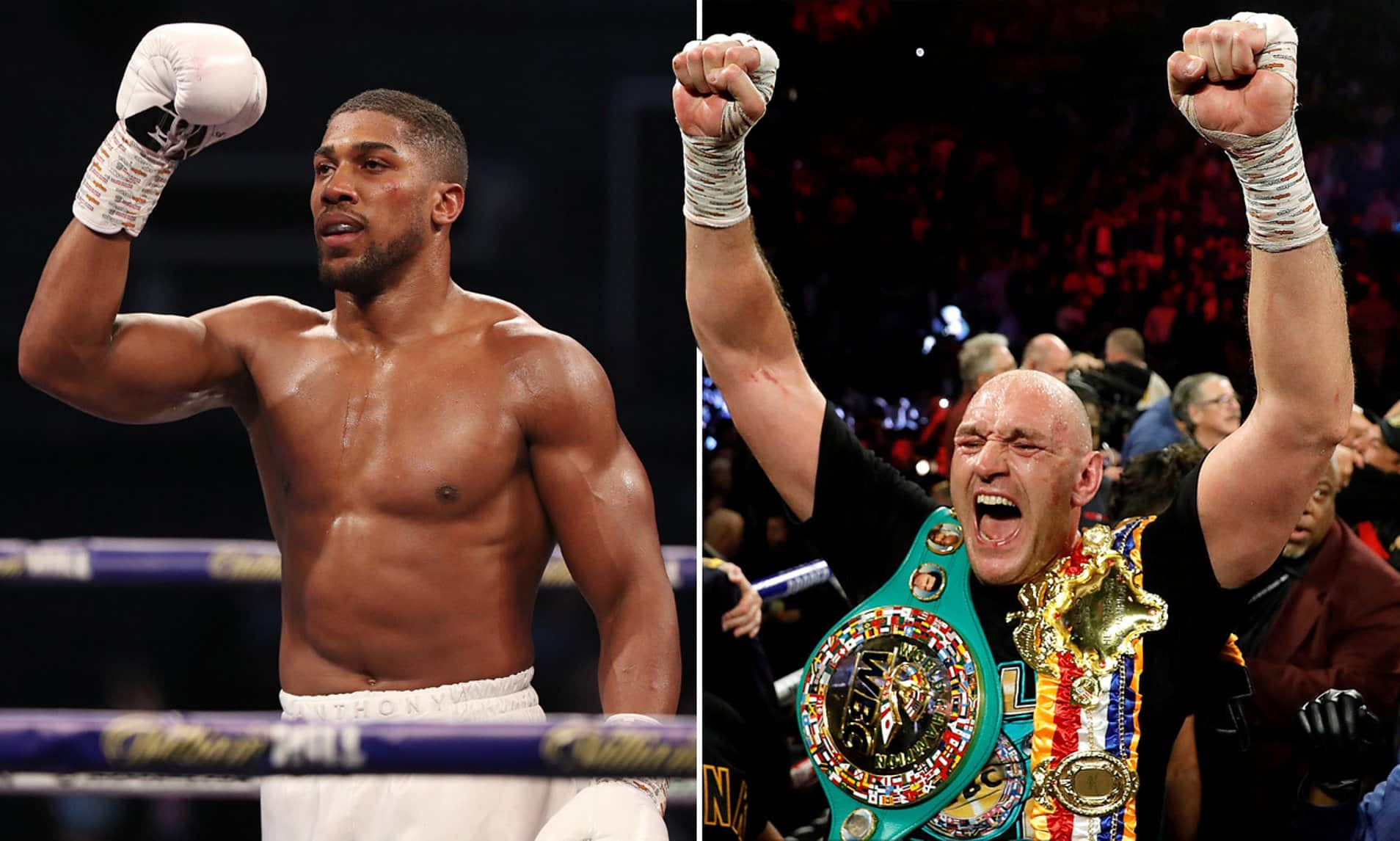 Fury: I'll Quit If Joshua Makes It Past Three Rounds With Me