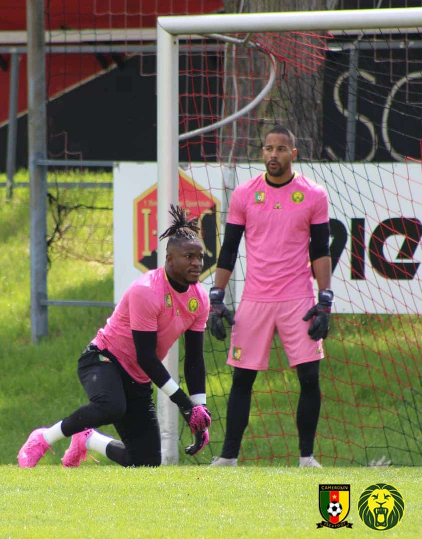 Cameroon Goalie Ondoa Doubtful For Super Eagles Friendly