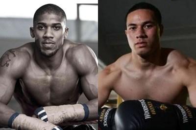 joshua-parker-boxing-completesportsnigeria.com