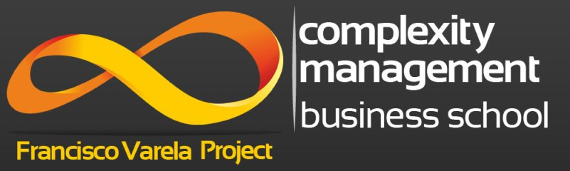 Complexity-Management-Business-School