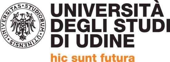 Università di Udine