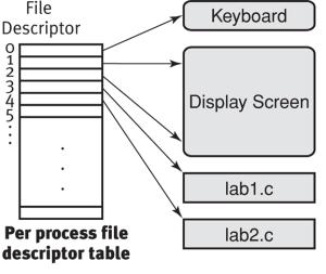 Create file in unix