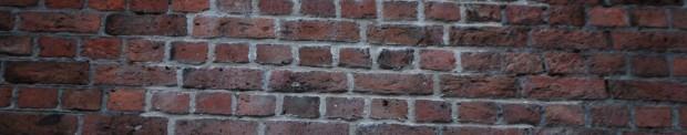 bricks 13