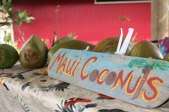 Maui Tropical Plantation- Maui Agriculture Tour