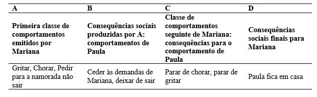 Quadro 1: esquema de interação entre Mariana e Paula (Modelo retirado do artigo de Marianno e Guilhardi, 2005).