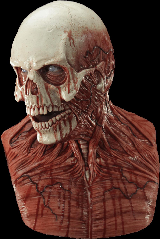 Yorick The Skull Silicone Mask CFX