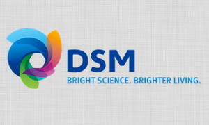 Photo of DSM Composite Resins Announce Price Increase