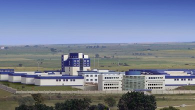 Photo of Poliya Expands Production into Russia
