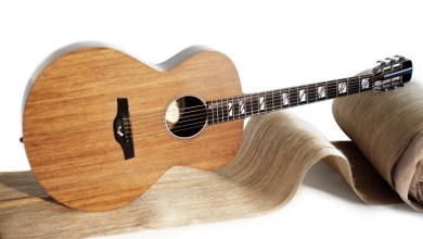 Photo of Blackbird Release New Natural Composites Guitar