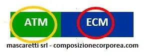 ECM/BCM