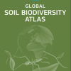 Disponible el Atlas de la biodiversidad del suelo de todo el planeta