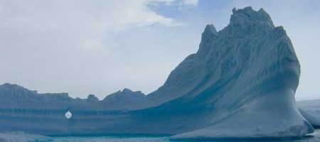 El ciclo del nitrógeno en la Antártida. Una aproximación molecular