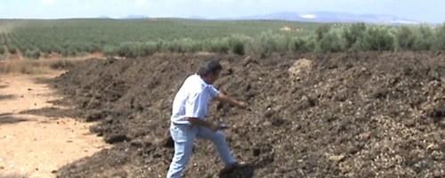 Compostaje en Andalucía (1ª parte): Manual de Campo para el Seguimiento del Proceso de Compostaje
