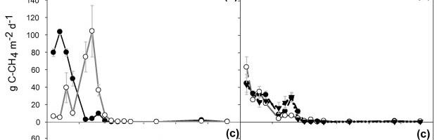 Emisión de CO2 durante el compostaje como indicador de la actividad biológica del compost