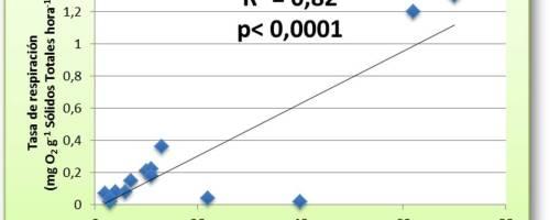 La Tasa de Respiración (o el consumo de oxígeno) es un indicador de la actividad biológica de un compost