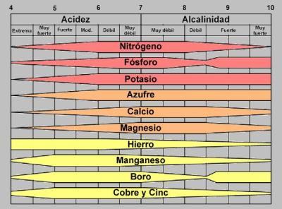 CompostandoCiencia: Asimilación de nutrientes en función del pH