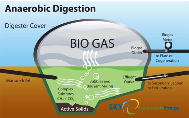 Oferta de trabajo sobre biogás