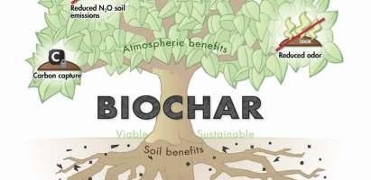 ¿Qué es el biochar?