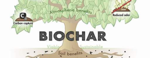 International Biochar Iniciative