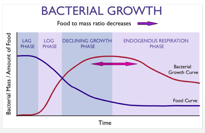 Crecimiento bacteriano