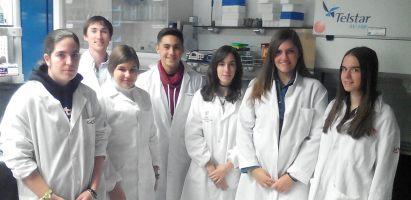 Cultivando bacterias fijadoras de nitrógeno e inoculando leguminosas con composts