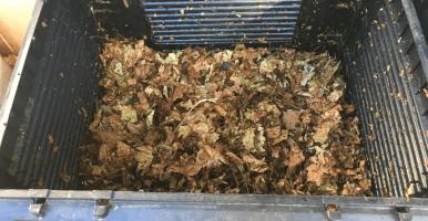 Empieza el primer experimento de compostaje doméstico